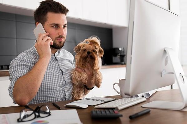 tener-mascotas-en-la-oficina 1