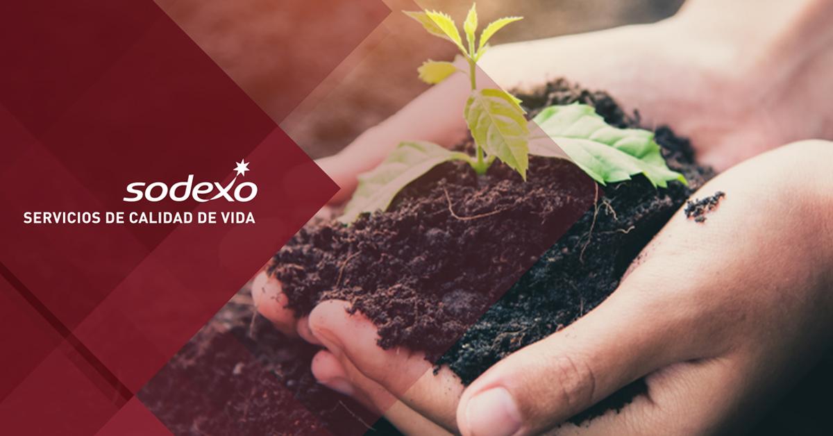 blog_vales-de-gasolina-pueden-ayudar-al-medio-ambiente